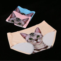 New Women's Cute Cat Style Seamless Panties Briefs Knickers Lingerie Underwear