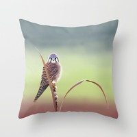 American Kestrel  Throw Pillow by North Star Artwork