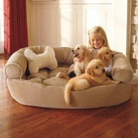 Dog Orthopedic Comfy Couch | Bedding | SkyMall