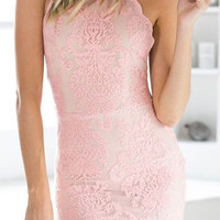 Backless Pink Lace Bodycon Dress