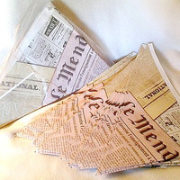 French Newspaper Paper Cones - French Fry Frites Paper Cones - Large Size
