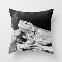 Lazy Bearded Dragon Throw Pillow by Karl Wilson Photography