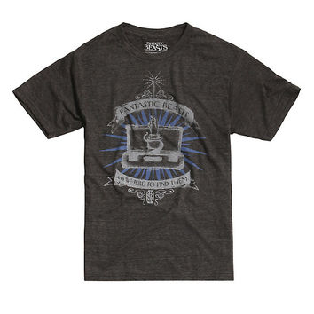 Fantastic Beasts And Where To Find Them Suitcase Tri-Blend T-Shirt