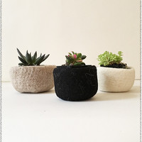 Nesting Felted Plant Holders | Set of 3