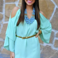 RESTOCK Can't Hold Me Back Dress: Mint   Hope's