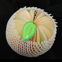 Peach Shaped Fruit Slices Note Paper / Memo Pad, 150-page Memo Pad, Paper Clip, Real Fruit PE Net