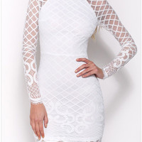 Lace And Mesh Long-Sleeve Zip-Back Bodycon Dress