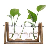 HOT SALE Plant Terrarium with Wooden Stand Glass Vase Holder for Home Decoration,Scindapsus Container (3 Terrariums)