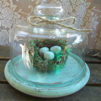 French Country  Decor, Vintage Glass Cloche, Glass Dome Display, Beach Cottage Chic, Home, Shabby Chic Decor
