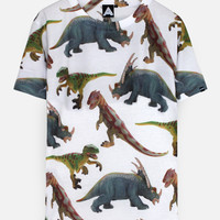 AND Dinosaurs Are Real Tee | ANDCLOTHING