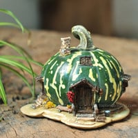 Green Gourd Fairy House - My Fairy Gardens