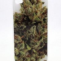 OG Kush Weed Marijuana Sour Diesel - iPhone 4 4S Snap On Case Clear Plastic Rasta Reggae