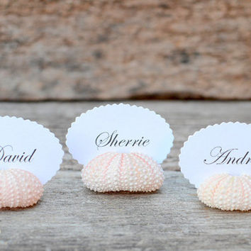1 Sea Urchin Shell Place Card Holders for Beach Wedding - Natural Pink - Reception Table Chic Decor - Guest Escort Favor Ocean Nautical
