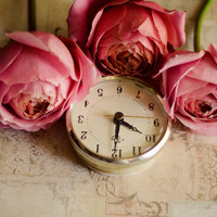 Girly wall art, romantic, pink, roses, still life,  flower photograph, time, french country, nursery print, fine art print, floral, 11x14