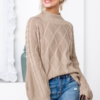 Turtle Neck Knit Sweater | Taupe