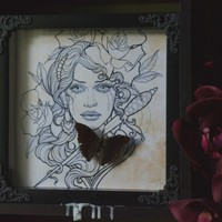 Preserved Demon Charaxes Butterfly Shadow Frame Display handmade by The Butterfly Babe