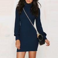 Turtleneck Lantern Sleeve Ribbed Bodycon Mini Dress