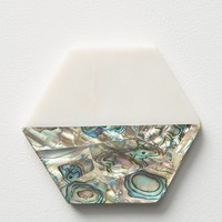 Paua Shell Coaster