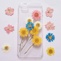 iPhone 6 Case pressed flower clear case for apple iphone 4 4s 5 5s 5c 6 6 plus 6s 6s plus pressed flower iphone case daisy