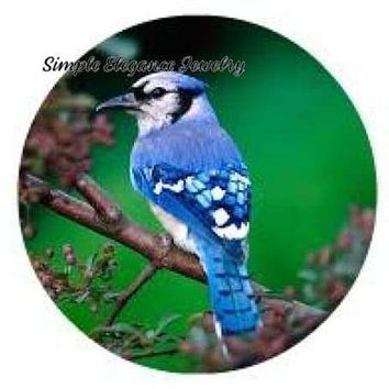 Blue Jay Bird Snap 20mm and 12mm Mini's  for Snap Jewelry