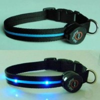 Dog Collar with LED Lights, Multi-Function, Blue - Size Large