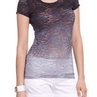 2B Ombre Lace Button Back Top 2b Knit Tops Grey Combo-m