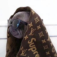 LV X Supreme Fashionable Warm Louis Vuitton Tassel Cashmere Cape Scarf Scarves Shawl Accessories Coffee