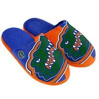 NCAA Florida Gators Split Color Slide Slipper, Small, Blue