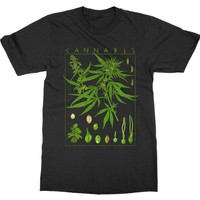 Men's Funny Cannabis Science - Botany Plant Research T-Shirt Tee
