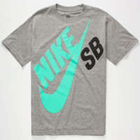 Nike Sb Big Logo Boys T-Shirt Heather Grey  In Sizes