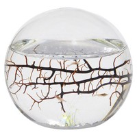 EcoSphere Small Sphere - 4 inches