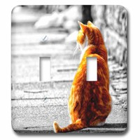 3dRose lsp_172991_2 Sweet Orange Tabby Cat Tinted Painting of a Cat Sitting in The Sun Light Switch Cover