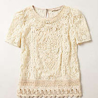 Lace Firenze Blouse