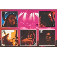 Pink Floyd Dark Side of the Moon Live Poster 24x36