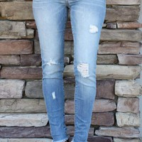 Ashley Distressed Skinnies