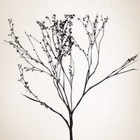 Vinyl Wall Decal Sticker Tall Tree Branches #MMartin140