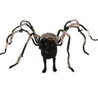 Funniest Halloween Spider Decoration Dog Costume DIY Large Spider Prop Homemade Dog Treats To Hand Out To Dogs Drops hipping