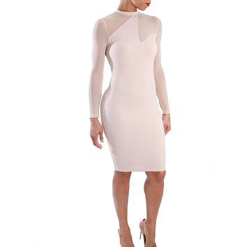 Mesh Is More | Bodycon Dress
