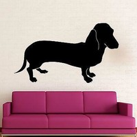 Wall Stickers Vinyl Decal Dachshund Dog Pet Funny Animal Room Decor Unique Gift (ig1325)