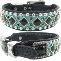 Studded Turquoise Leather Dog Collar   Marley