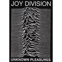 Joy Division Unknown Pleasures Album Cover Poster 24x34