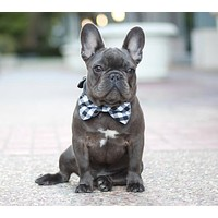 Plaid Black Dog Bow tie collar, Pet accessory, birthday gift, dog lovers
