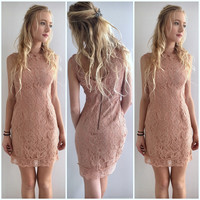 Lace Vintage Bodycon in Rose