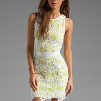 Wish Lotus Dress in Limepop