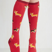 Quirky Charmed to the Corgi Socks by ModCloth