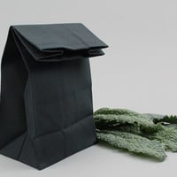 """The """"Brown"""" Bag // Black UNWAXED Canvas Lunch Bag, an updated, eco-friendly classic"""