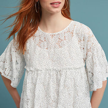 Dotted Lace Top