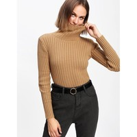 Rib Knit Turtleneck Sweater