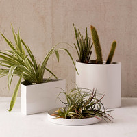 "Mod 7"" Double Planter + Drainage Tray Set 
