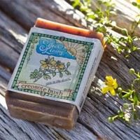 All Natural Soaps - Creosote Bush /Rain In the Desert - Handcrafted All Natural Soaps and wonderful re-purposed felted wool items and other useful things - Creosote Bush/ Rain in the Desert